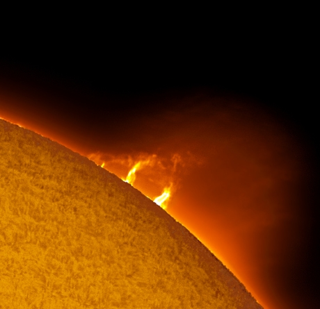 Nice group of active prominences on the edge of the sun