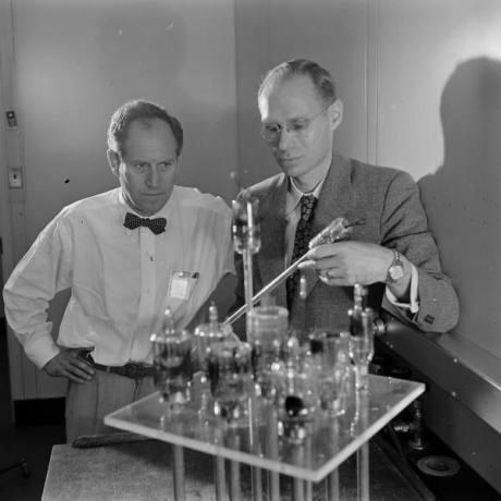 scientists in bowties