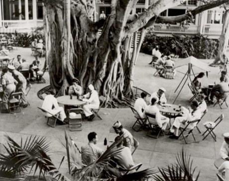 Patio Area and Banyan Tree